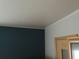 Plaatsing vals plafond